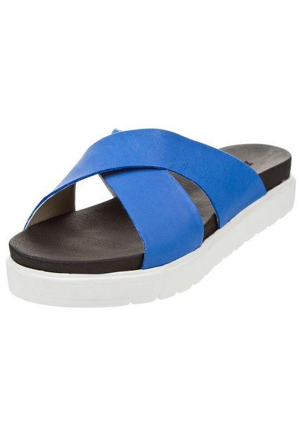 Zueco Azul Foglia Lewisia